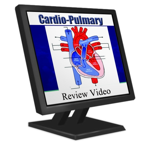 cardiopumonary-image
